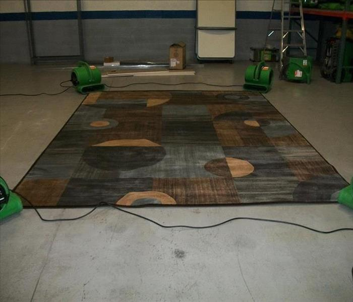 Rug Cleaning After Storm Damage in Wayne, NJ Home