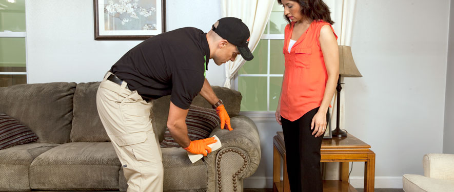 Clifton, NJ carpet upholstery cleaning
